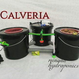 new hydroponics systevs by minona hydroponics