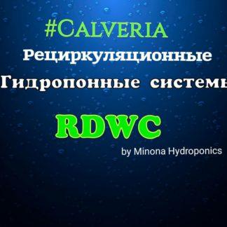 RDWC гидропонные системы